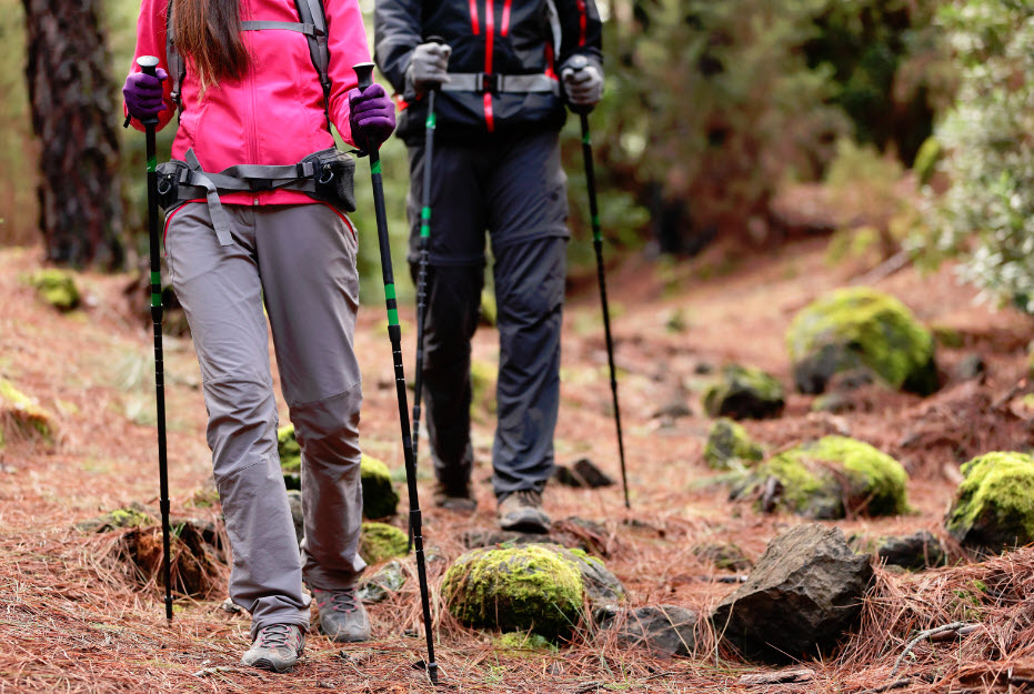 difference hiking vs mountaineering
