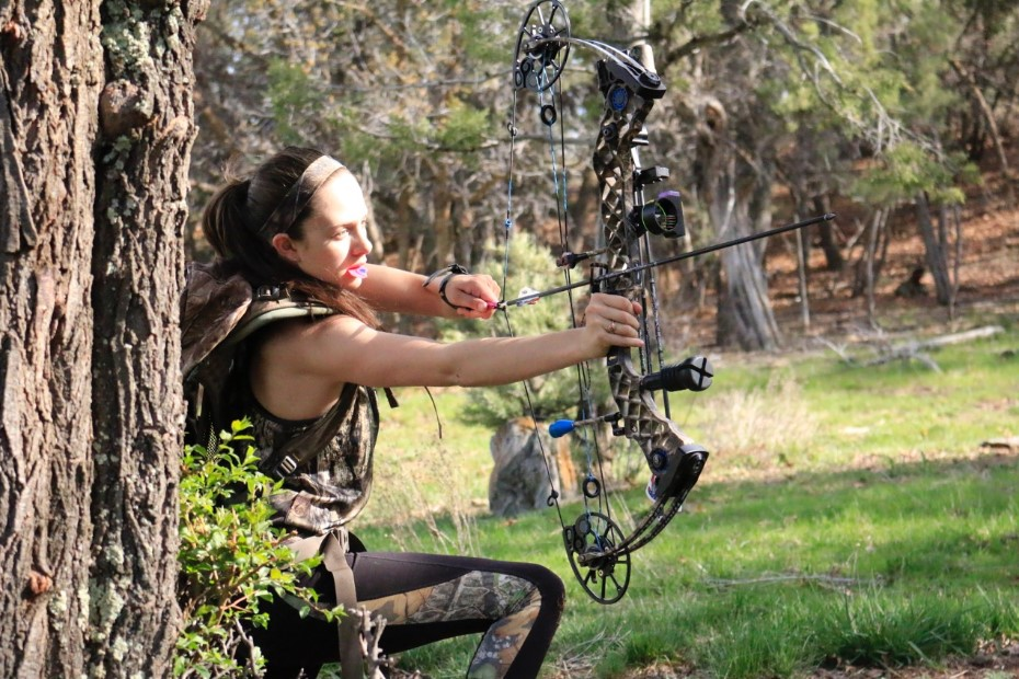 Beginner's Guide to Bowhunting
