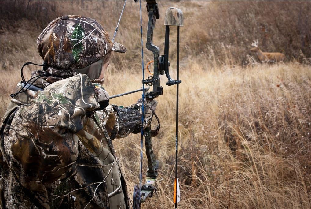 Summer Bow Hunting