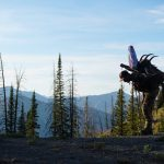 Backpack Hunting pros cons