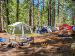 5 best tent cots for outdoor adventure