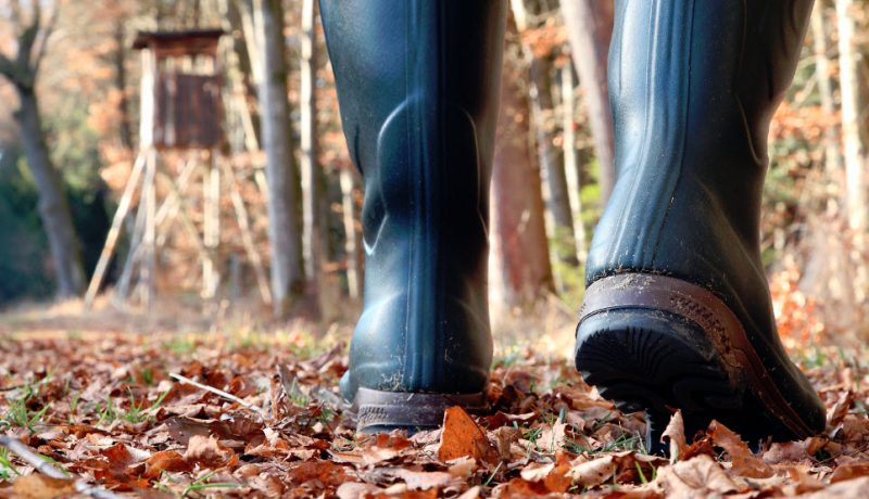 Are Rubber Boots Best For Deer Hunting?