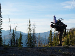 Is Backpack Hunting Worth It? The Pros & Cons to Help You Decide