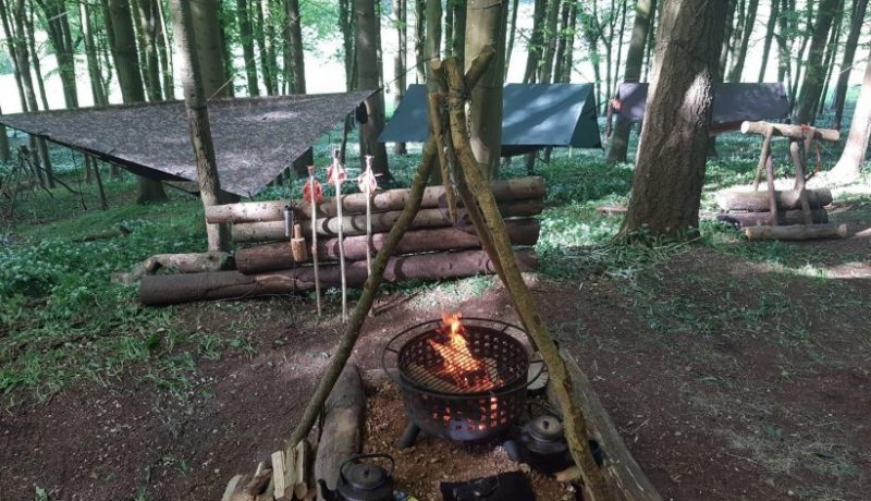 Bushcraft- The Basics, the Tools& the Skills You Need for Mastering It