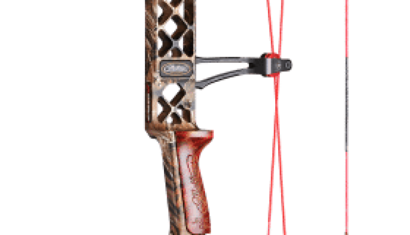 Choosing a Good Compound Bow