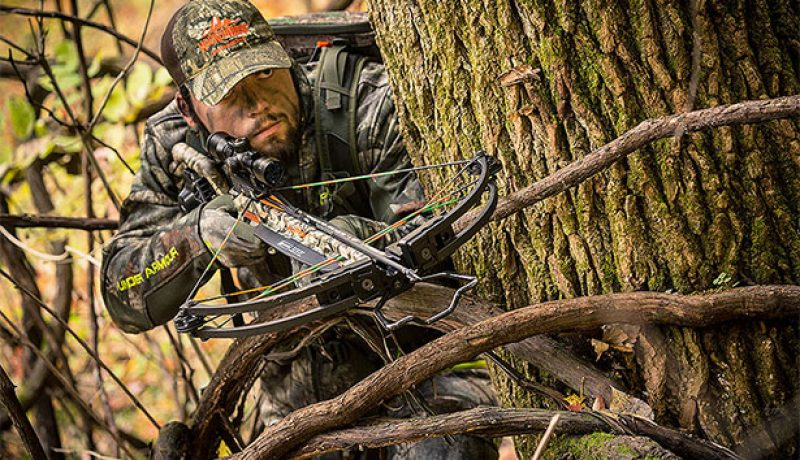 All You Need To Know About Crossbows