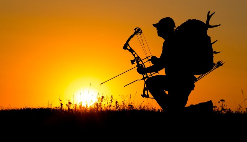 How Archery Can Help Improve Your Survival Skills