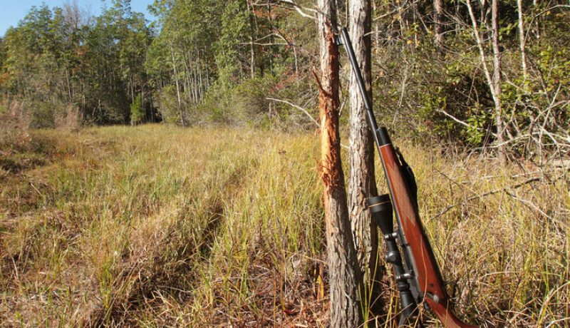 Hunting in Kentucky- The Essentials & Fundamental Tips to Know