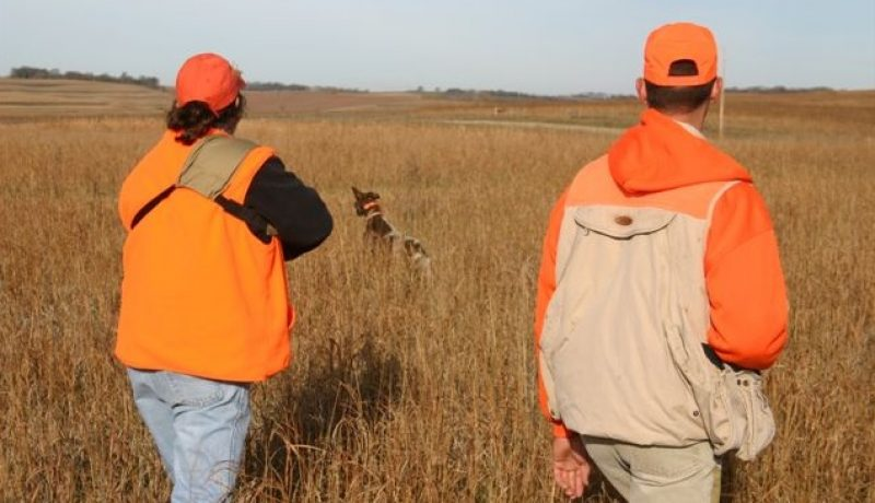 Tips To Keep in Mind Before Hunting