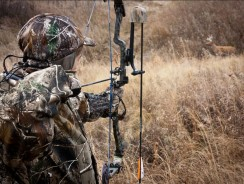 Where to Hunt this Summer – 7 States that Allow Summer Bow Hunting