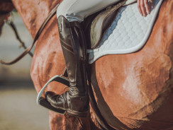 Why Do Horse Riders Wear Long Boots?