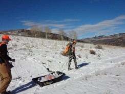 Bringing Home the Bacon – 3 Tips for Meat Hunters