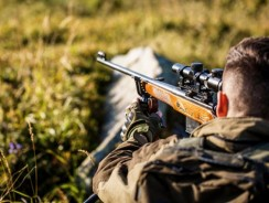 Which Firearm Type is Right For Your Hunting Trip?