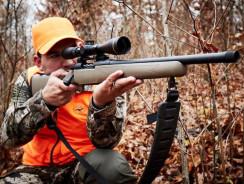 Top 6 Deer Hunting Tips for Novice Hunters