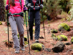 What Are the Differences between Hiking and Mountaineering?