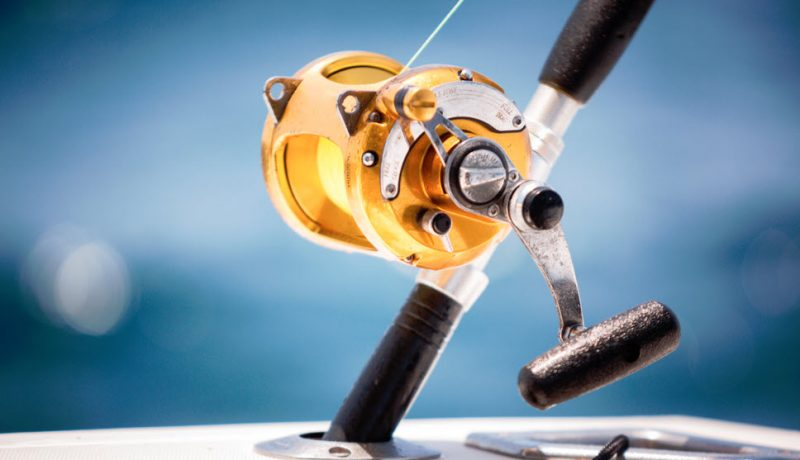 How Often Should You Oil Your Fishing Reel?