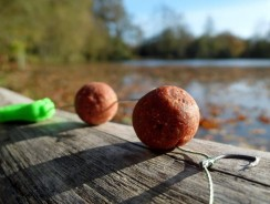 6 Tips For Using and Choosing Boilies